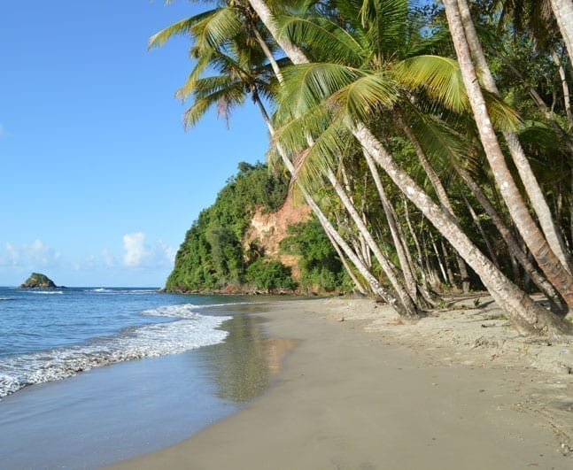 Dominica_Climate_Action_square